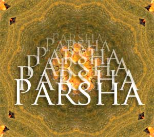 Parsha on Boruch Rappaport Author Blog